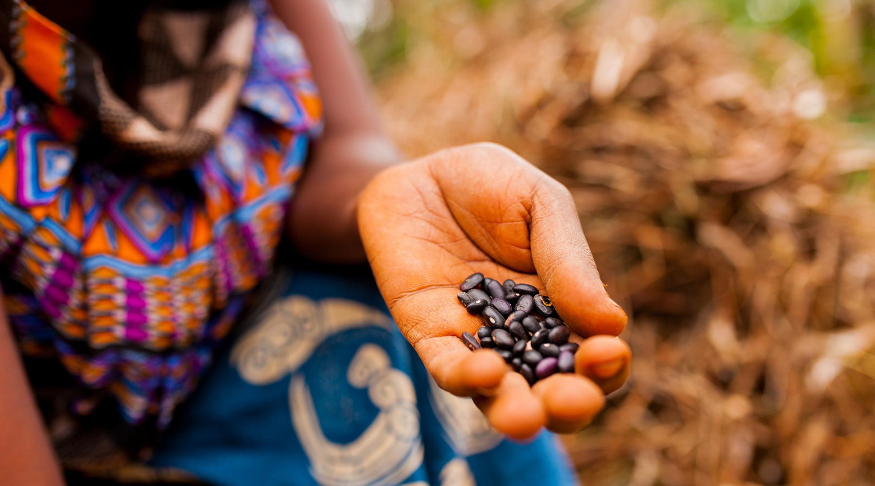Journée de l'Afrique : Le point de vue du Country Manager de la RDC